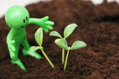 Gardening concept. Smilie looking  after green seedlings Royalty Free Stock Photo