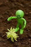 Gardening concept. Smilie looking  after green seedlings Stock Images