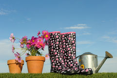Gardening concept five. Gardening concept with flowers and wellington boots stock images