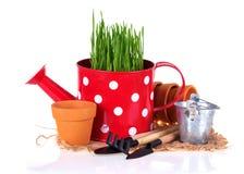 Gardening concept. Stock Photo