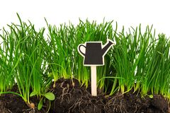 Gardening concept: grass, soil, board for text Royalty Free Stock Photo