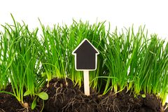 Gardening concept: grass, soil, board for text Royalty Free Stock Photos