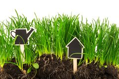 Gardening concept: grass, soil, board for text Stock Photo