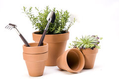 Gardening concept isolated on white background Royalty Free Stock Images