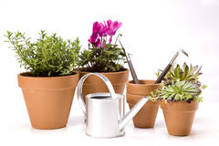 Gardening concept, pots and can over white Royalty Free Stock Photo