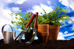 Gardening concept, vivid bright springtime theme Stock Images