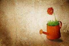 Gardening concept with watering can Stock Photo