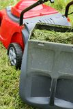 Gardening. Container of lawn mower full of grass stock photo