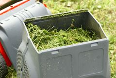 Gardening. Container of lawnmower full of grass royalty free stock photos