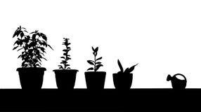 Gardening contour Royalty Free Stock Images