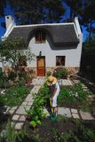 Gardening Cottage. Preparing soil in neat Cape Town indigenous cottage garden Stock Photography