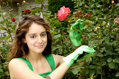 Gardening Cutie. Beautiful girl in a rose garden Stock Photo