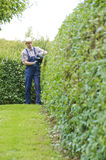 Gardening, cutting hedge Royalty Free Stock Image