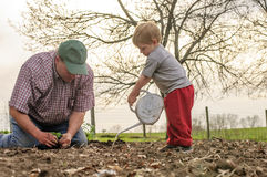 Father and son gardening Stock Photography