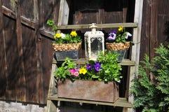 Gardening decorating flower spring Royalty Free Stock Image