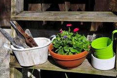 Gardening decorating flower spring Royalty Free Stock Photos