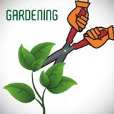 Gardening design Stock Image