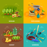 Gardening 2x2 Design Concept. Set of seedling and harvest compositions with farm tools for formation of garden beds fertilization and watering vector Royalty Free Stock Photography