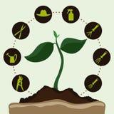 Gardening design. Stock Photography