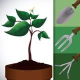 Gardening design. Stock Images