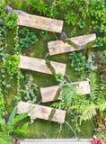 Gardening design. Waterfall with wooden box, gardening design Royalty Free Stock Photography