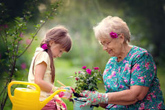 Gardening, discovering and teaching concept stock photo