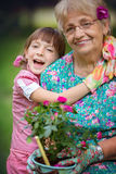 Gardening, discovering and teaching concept Stock Photos