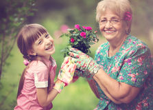 Gardening, discovering and teaching concept Stock Image