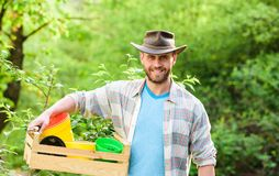 Gardening. Eco farm worker. Harvest. farming and agriculture cultivation. Garden equipment. happy earth day. Eco living. Muscular ranch man in cowboy hat. sexy royalty free stock images