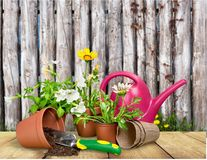 Gardening equipment Stock Photography