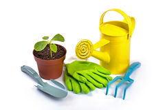 Gardening equipment and potted plant isolated on white backgroun Royalty Free Stock Photography