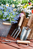 Gardening Royalty Free Stock Image