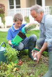 Gardening in family. Father and son planting flowers in house garden Royalty Free Stock Photography