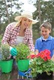 Gardening in family Stock Image