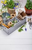 Gardening and floriculture spring flower with garden Stock Photos