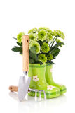 Gardening with flowers Royalty Free Stock Photography