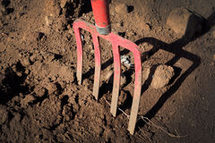 Gardening fork in the ground -  pitchfork in sand Royalty Free Stock Images