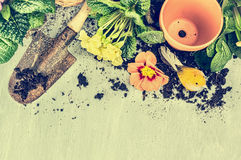 Gardening frame with old garden scoop, flowers pot, soil and blooming , top view Royalty Free Stock Photography