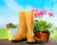 Gardening. Garden summer spring homework sunlight flowerpot Stock Image