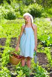 Gardening girl Royalty Free Stock Photo