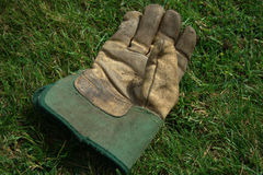 Gardening Glove Stock Images