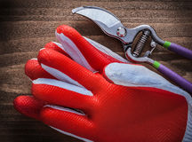 Gardening glove and sharp secateurs agriculture concept Royalty Free Stock Photos