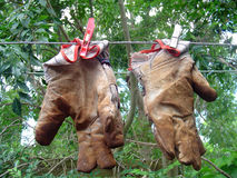 Gardening Gloves. Dirty gardening gloves on a washing line royalty free stock image