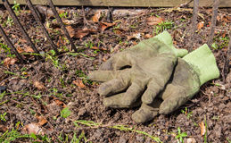 Gardening. Gloves and forks in a typical garden Stock Photography