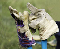 Gardening gloves on garden shears Stock Photos