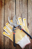 Gardening gloves and secateurs Stock Images
