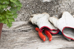 Gardening gloves Royalty Free Stock Photo