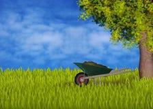 Gardening with green wheelbarrow. Green wheelbarrow in the garden, maple tree, sky with cloud, green grass Stock Photography