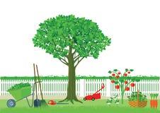 Gardening and harvesting Stock Photo