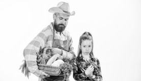 Gardening and harvesting. Family farm organic vegetables. Man bearded rustic farmer with kid. Farmers family homegrown. Harvest. Father farmer or gardener with stock images